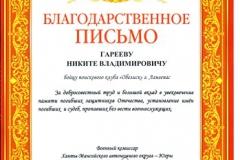 Грамота Гарееву Никите [DVD (NTSC)]