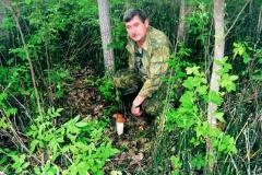 Тихая охота - за грибами